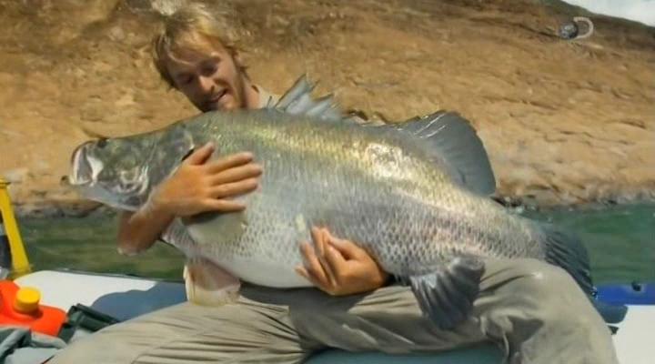 дискавери рыбацкие легенды